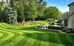 Как выбрать искусственный газон: советы профессионалов