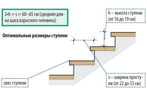 размеры ступеней