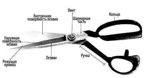строение ножниц